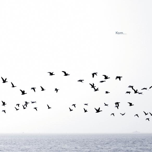 Stilte kaart - Vliegen
