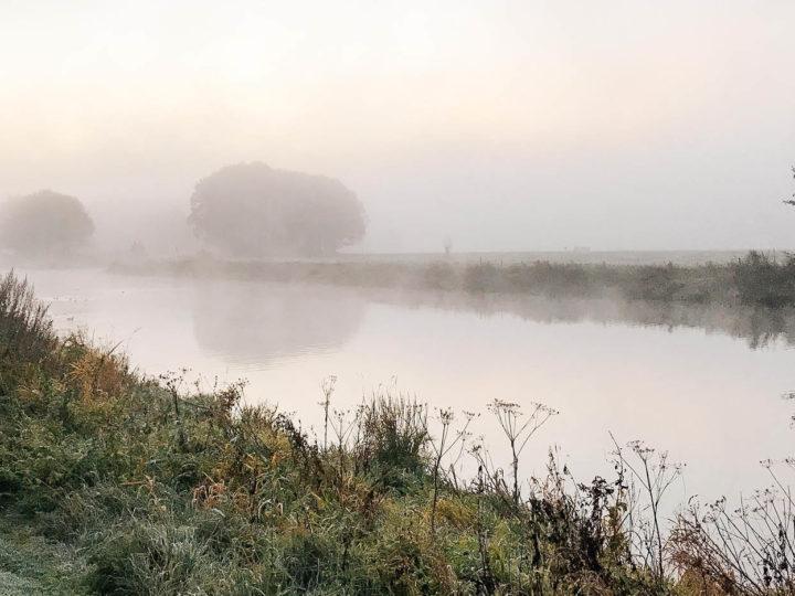 Bewust kijken: onze ochtendwandeling langs de rivier de Vecht