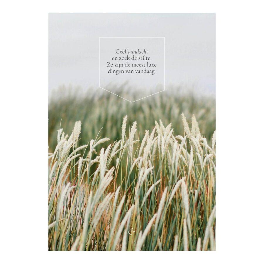 Essencio - A4 poster - Geef aandacht en zoek de stilte luxe van vandaag x