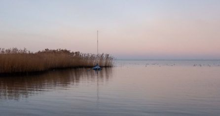 Essencio - blog Veluwemeer - hetzelfde meer, nieuwe inspiratie - anders kijken bewust genieten