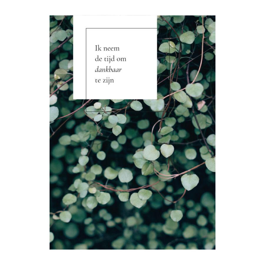 Essencio - Affirmatiekaart - Ik neem de tijd om dankbaar te zijn