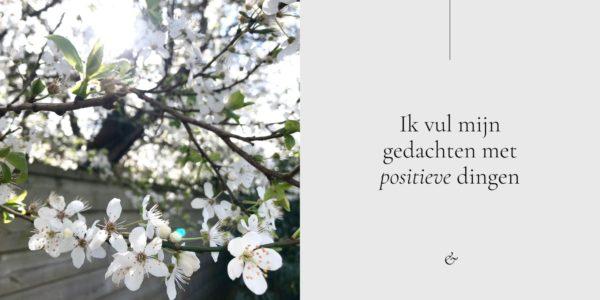 Essencio - Blog - Positief in crisistijd: de lente is het grootste geschenk