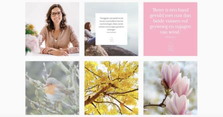 Essencio Business en Branding - Professionele en stijlvolle content branding huisstijl voor social media - Ontdek Canva voor ondernemers